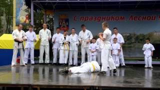 Выступление 9 мая 2012 года
