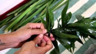 Making of a Ti Leaf Lei