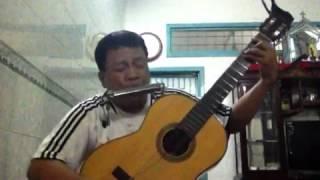 Xom dem guitar hacmonica
