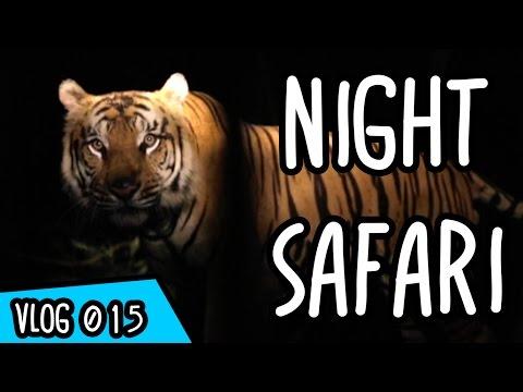 Night Safari - BALI WITH TEAMSUPERTRAMP #7
