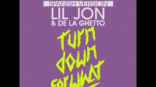 Turn Down For What Spanish Remix - De La Ghetto