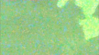 Download Video HORROR MOVIE - Wild Babs Trailer (ab18 unzensiert) MP3 3GP MP4