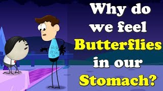Why do we feel Butterflies in our Stomach? | #aumsum #kids #education