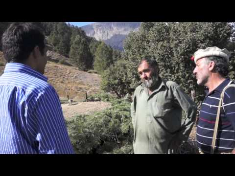 Trapping Chitral