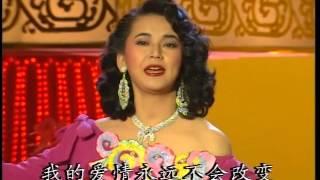 1992年央视春节联欢晚会 歌曲《城市行囊》 胡慧中  CCTV春晚