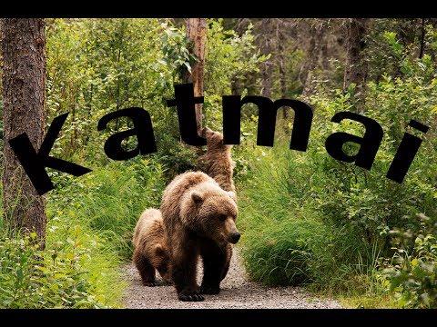 Tour of Katmai National Park - Alaska