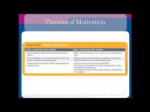 how behavior exhibits motivation