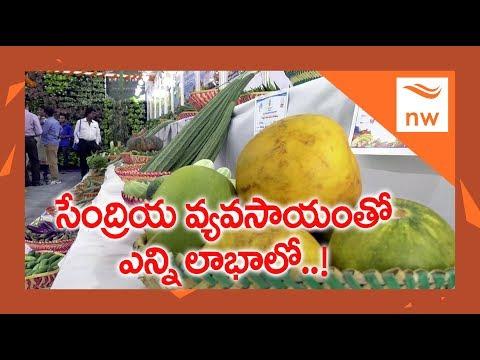 Horticulture Dept Organises Organic Expo In Vijayawada Siddhartha Hotel Management College | NW