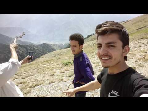 Chitral gol national park Top