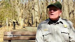 Deer Overpopulation in Rock Creek Park