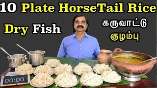 OMG! Record.!! 10 Plate HorseTail Rice (Millet) Eating Challenge | குதிரை வாலி சாப்பிடும் போட்டி |