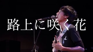 路上に咲く花 HACHI BAND ver.@TOUR FINAL 2015.12.18