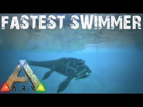ARK Survival Evolved - Fastest Swimming Dino Test with Timer and Controlled Leveling