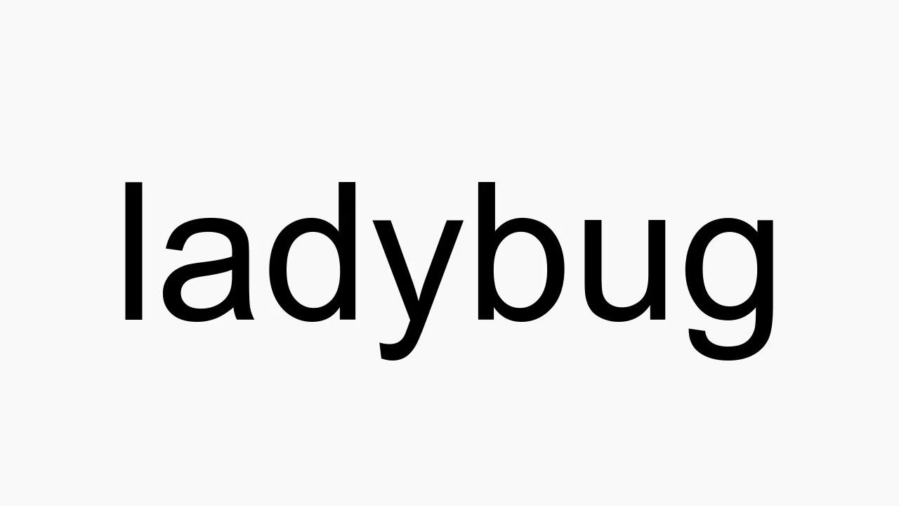 How to pronounce ladybug