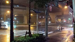도쿄의 비 오는 밤 도로 풍경 | 차소리, 빗소리 AS…