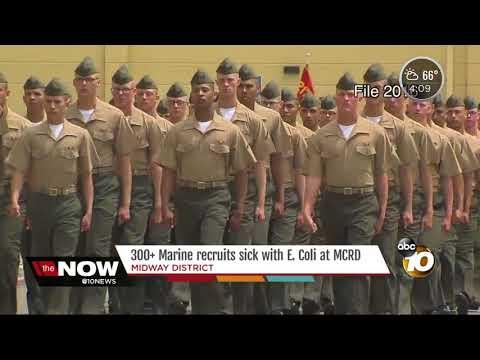 Over 300 Marine recruits sick with E.Coli