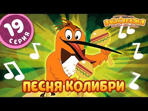 ПЧЕЛОГРАФИЯ - Мультик для детей - 19 серия (Новая серия) ❗️ПРЕМЬЕРА❗️ -Песня колибри