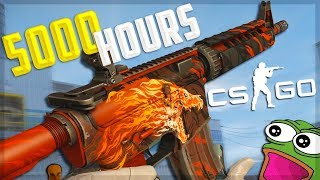 What 5000 Hours of CS:GO Looks Like...