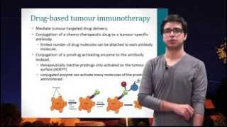 [Biopharmaceuticals] Chapter 11 Antibody-based therapeutics