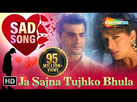 Ja Sajna Tujhko Bhula - Raja Songs - Madhuri Dixit - Sanjay Kapoor - Udit Narayan - Alka Yagnik