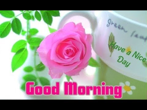 ❤💕 Good morning honey ❤💕 - Romantic and Sweet Love Message! - YouTube