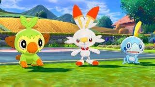 Pokemon Sword - Who Shall I choose?