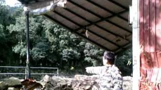 黑龍潭 可怕的山洪爆發篇 Terror Mountain flooding