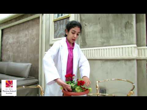 "Science Fair project ""Talking Plant"", presented by student of IMSSG, Cairo, Egypt"