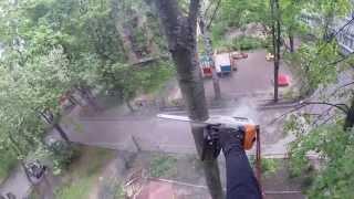 Спил деревьев в Карелии, СПб и Лен.области(, 2015-07-16T06:46:46.000Z)