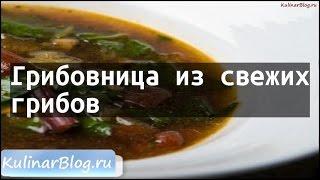 Рецепт Грибовница из свежихгрибов