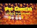 أغنية twenty one pilots: Pet Cheetah (Official Instrumental)