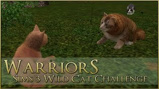 A Lion Paw Too Far || Warrior Cats Sims 3 Legacy - Episode #14