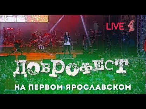 """Louna / Луна - Live Доброфест - 2019 (""""Первый Ярославский"""")"""