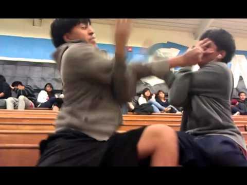 estupidos fighting