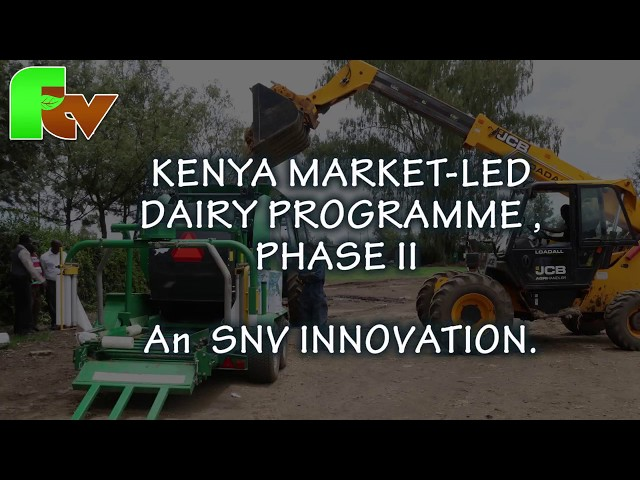 SILAGE PRODUCTION a Kenya Market-Led Dairy Program- SNV