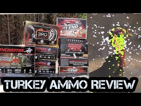 Ultimate Turkey Ammo Review.  Lead, Heavy Shot, and TSS.
