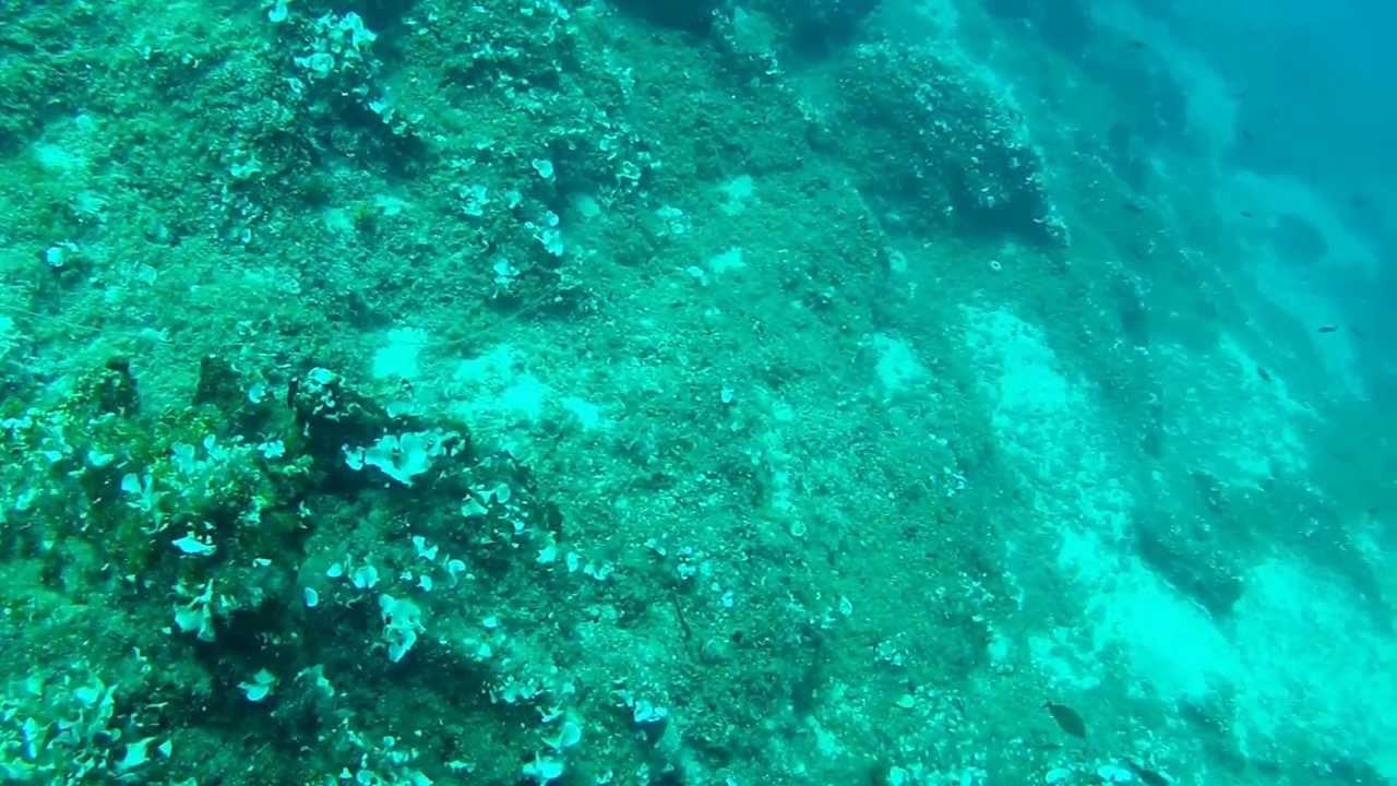 Liability Car Insurance >> Anavyssos Dive - Underwater Car Junk Yard - YouTube