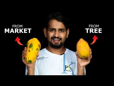 Market Vs Tree