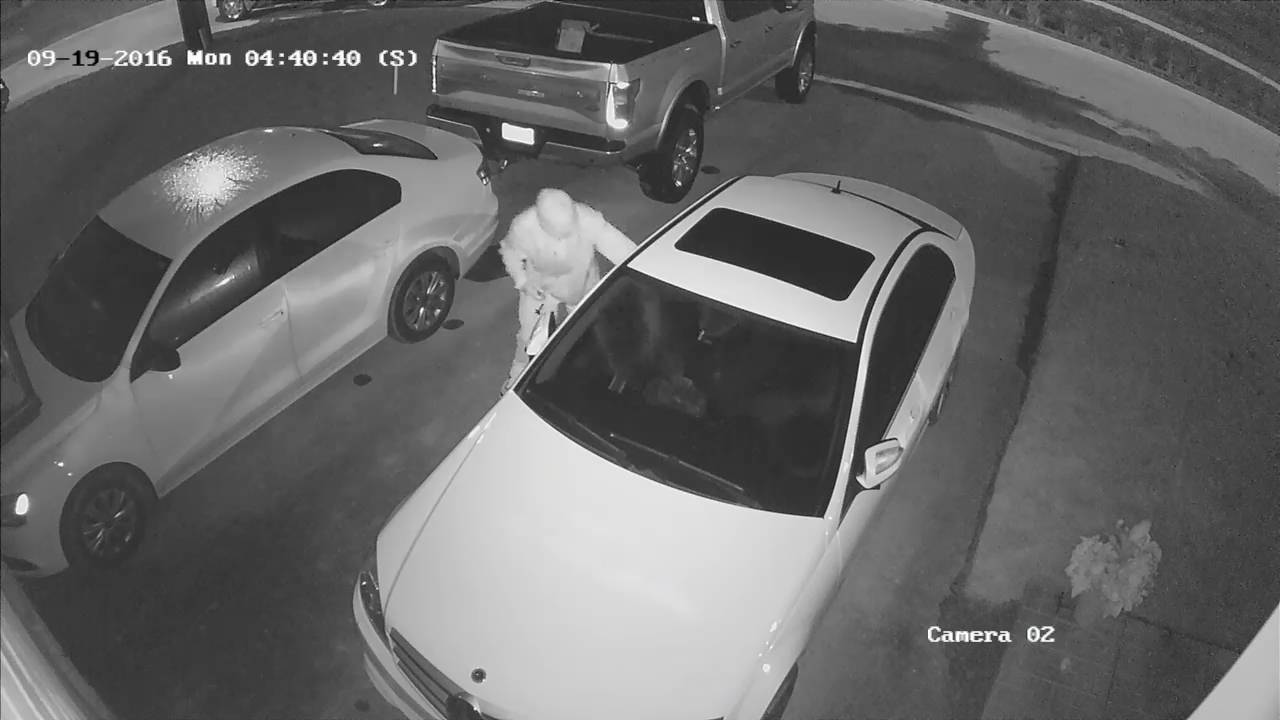 www deltasecuritysolutions ca car break in caught on security