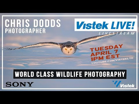 Sponsored By Sony: Vistek LiveStream Event - World Class Wildlife Photography With Chris Dodds