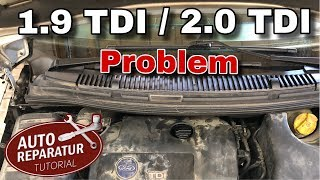 PDE Kabelbaum Zylinderkopf wechseln | 1.9 TDI / 2.0 TDI Problem | DIY Tutorial