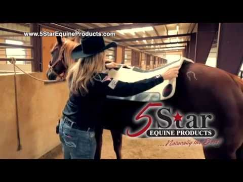 5 Star Equine Products - Lari Dee Guy - Applying Your 5 Star Saddle Pad
