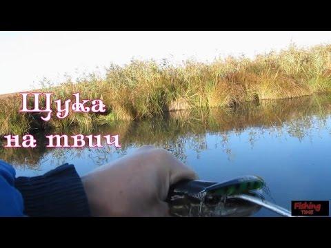 Щука на спиннинг в траве*** Отчеты о рыбалке..