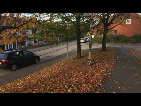 Vlog October 29th 2016 Basildon