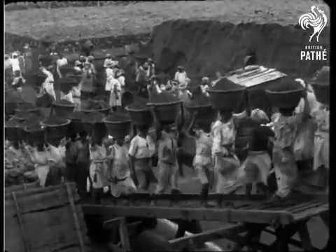 The Coal Girls  loading ships  in St.lucia 1930