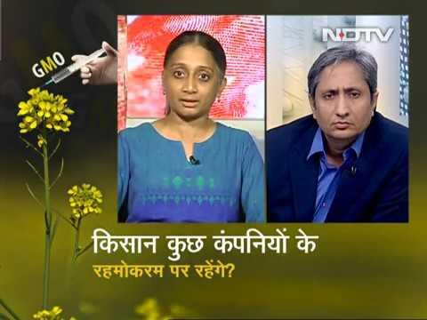 Prime time by Ravish Kumar May 23 17 On Shall Modi allow GM, genetically modified, Mustard
