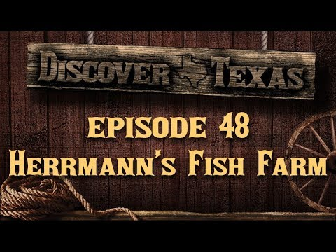 Discover Texas Episode 48 Herrmann's Fish Farm