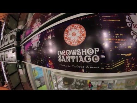 RUTA GROW - Growshop Santiago