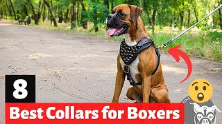 8 Best Dog Collars for Boxers in 2021