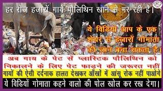 गौ माता को पॉलिथीन खा जाने पर मरने से कैसे बचाएं, How to save cow from polythene